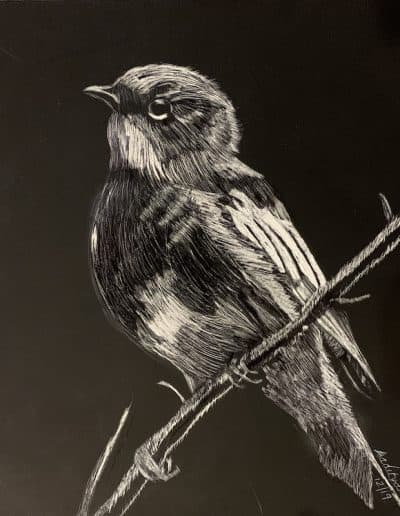 scratch art by aaditya desai Previous Art of the Month